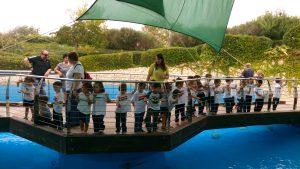 EI_palma aquarium 2