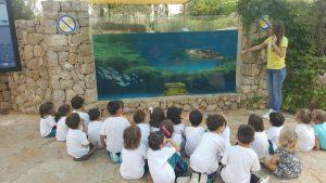 EI_palma aquarium 3