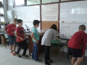 TC_5è_EP_foli_laboratori 6